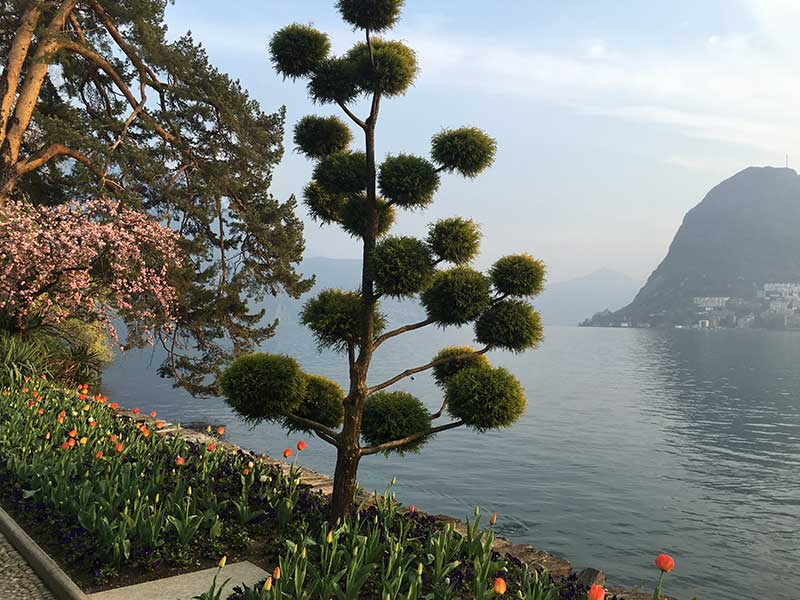 Tatiana Alciati Wedding & Events Locations Svizzera Lago di Lugano