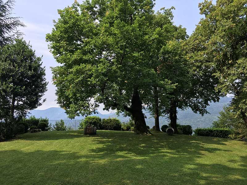 Tatiana Alciati Wedding & Events Locations Svizzera Castello di Morcote